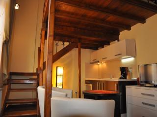 Select City Center Apartments - Cosy Studio - Brasov vacation rentals