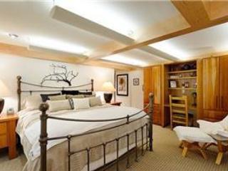 Unit #702 - Snowmass Village vacation rentals