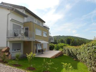Nice Condo with Internet Access and Central Heating - Heidelberg vacation rentals