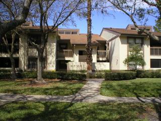 217 Woodlake Wynde, Oldsmar, Florida 34677 - Oldsmar vacation rentals