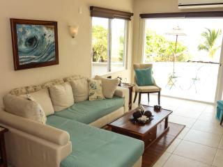 2 BR ocean view condo in best area of Puerto! - Puerto Escondido vacation rentals