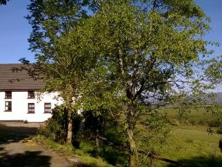 Cosy Country Cottage - Bantry vacation rentals
