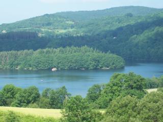Chalet mitoyen 8p en bordure de foret, lac à 500 m - La Salvetat-sur-Agout vacation rentals