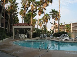 Beautiful Condo with Deck and Internet Access - South Padre Island vacation rentals