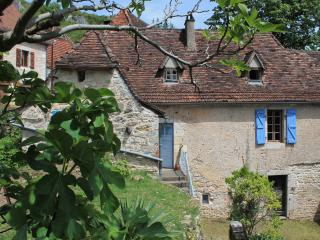 Charming Cottage with Tennis Court and Books - Marcilhac-sur-cele vacation rentals