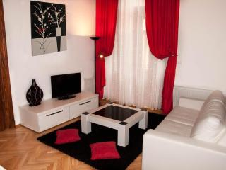 Select City Center Apartments - Cheminee Apartment - Brasov vacation rentals
