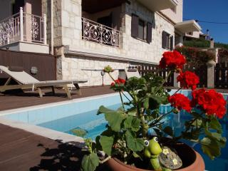 The Green Villa with pool in middle Crete - Archanes vacation rentals