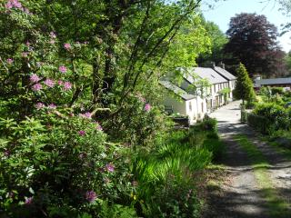 Lovely Bed and Breakfast with Internet Access and Central Heating - Clydey vacation rentals