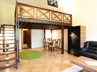 Select City Center Apartments - Mezzanine Studio - Brasov vacation rentals