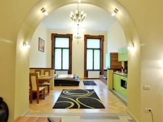 Select City Center Apartments - Arcade Studio - Brasov vacation rentals
