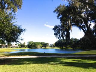 Kate's Places / Ming - Golf & Lake Home near Beach - New Smyrna Beach vacation rentals