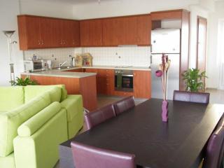 Acropolis view executive apartment 2 bedrooms - Athens vacation rentals