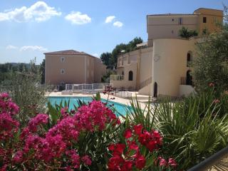 Nice Condo with Internet Access and Satellite Or Cable TV - Pont Royal vacation rentals
