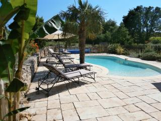 Nice Gite with Internet Access and A/C - Saint-Paulet-de-Caisson vacation rentals