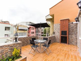 Bright 2 bedroom Vacation Rental in Istanbul - Istanbul vacation rentals