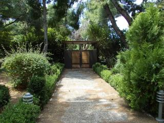New Villa 100 m2 in a marvelous garden 1200 m2 - Nea Makri vacation rentals