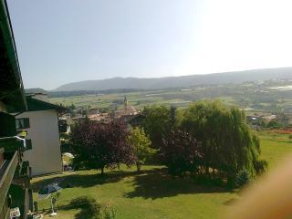 grazioso appartamento in Val di Non (TN) a 980 m - Castelfondo vacation rentals