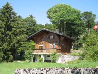 Cozy 2 bedroom Chalet in Yverdon - Yverdon vacation rentals