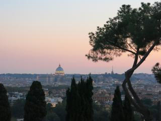 Breathaking view Penthouse-Pool - Rome vacation rentals