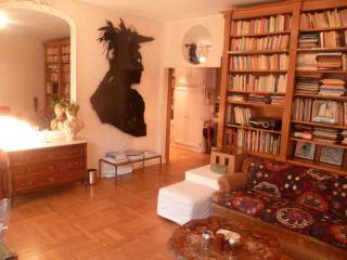 RUE DE GRENELLE 75006 PARIS - Paris vacation rentals