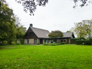 Villa next to Amsterdam and close to airport - Aalsmeer vacation rentals