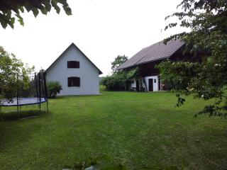 2 bedroom Cottage with Internet Access in Trebnje - Trebnje vacation rentals