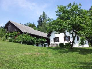 Cozy Trebnje Cottage rental with Dishwasher - Trebnje vacation rentals