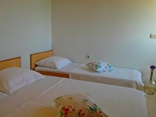 Island Ugljan - apartment for rent (2+1) - Sutomiscica vacation rentals