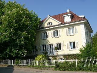 Nice Condo with Internet Access and Satellite Or Cable TV - Baden-Baden vacation rentals