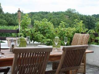 It's all about the veiws, the vines and relaxation - Lignieres-Sonneville vacation rentals
