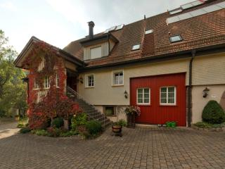 Nice Condo with Internet Access and Central Heating - Baiersbronn vacation rentals