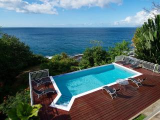 Mot Mot Lodge Tobago - Mount Irvine vacation rentals