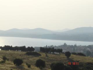 Apartment in Nikiti, Sithonia, ID: 2307 - Agios Nikolaos vacation rentals