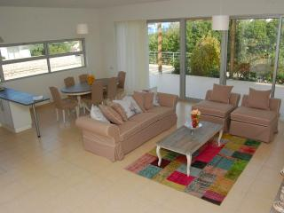 Relaxing Holiday Villa in North Cyprus - Ayios Amvrosios vacation rentals