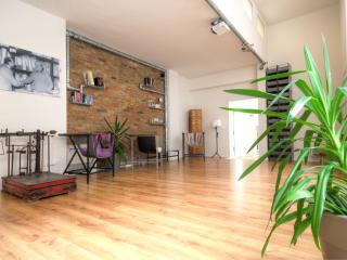 Bright Resort with Internet Access and A/C - Bologna vacation rentals