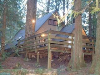 #86 Rustic Pet-Friendly Cabin near Mt. Baker! - Glacier vacation rentals