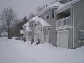 3BR Eden Ridge, Great  for Bethel & Sunday River!! - Bethel vacation rentals