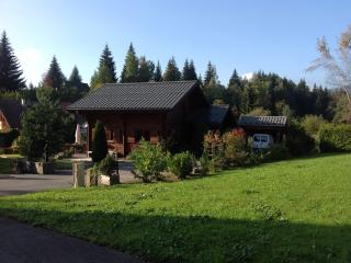 Nice Chalet with Internet Access and Satellite Or Cable TV - Araches-la-Frasse vacation rentals
