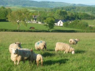 Farm holiday Cottage Devon Somerset sleeps 4 - Brompton Ralph vacation rentals