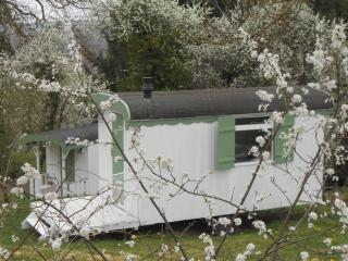 Nice Shepherds hut with Internet Access and Balcony - Epinac vacation rentals