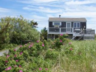 177 Phillips Rd. - Bourne vacation rentals