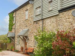 LEAT COTTAGE NEWLAND MILL, woodburner, enclosed garden, pet-friendly, WiFi, in North Tawton Ref 924311 - North Tawton vacation rentals