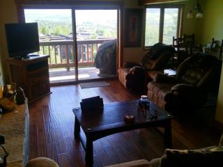 202 Sunrise Condominiums - Mountain Area - Steamboat Springs vacation rentals