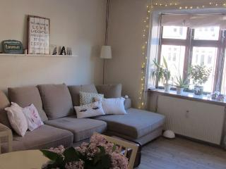 Cosy Copenhagen apartment at Amager - Copenhagen vacation rentals