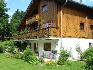 LLAG Luxury Vacation Apartment in Clausthal-Zellerfeld (Oberharz) - 721 sqft, quiet, beautiful, relaxing… - Clausthal-Zellerfeld vacation rentals