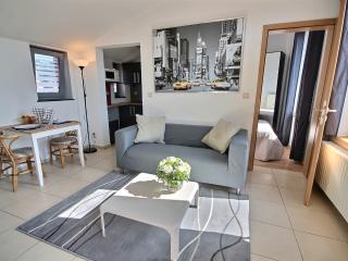 Pont des Arches 2- One bedroom - Liege vacation rentals
