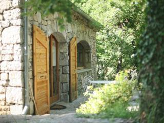 LOFT d'architecte en pleine guarrigue - Vallon-Pont-d'Arc vacation rentals