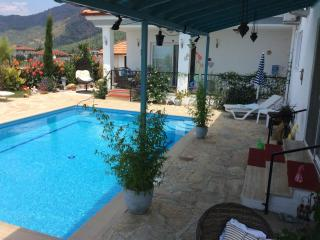 Exclusive B&B with private use of pool, relax and unwind in a stunning property - Koycegiz vacation rentals