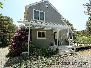 3 bedroom House with Internet Access in Edgartown - Edgartown vacation rentals