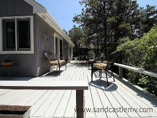 Sunny House with Internet Access and Dishwasher - Edgartown vacation rentals